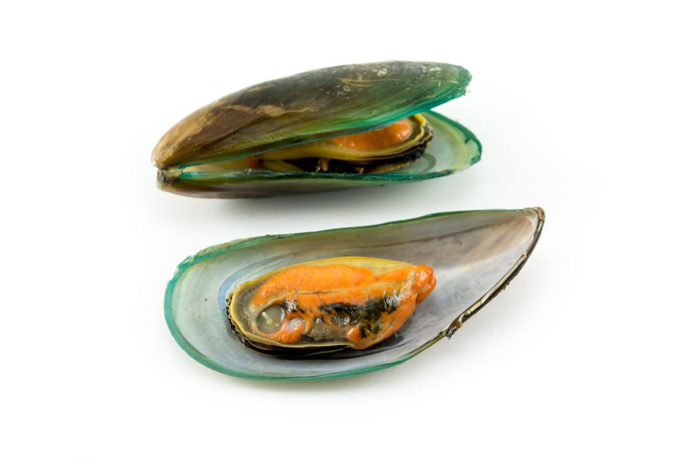 Grünschalmuscheln
